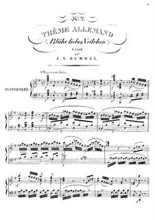 Variations on a Theme Allemande 'Blühe liebes Veilchen': Variations on a Theme Allemande 'Blühe liebes Veilchen' by Johann Nepomuk Hummel