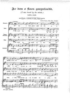 Ar Don o flaen Gwyntoedd: Ar Don o flaen Gwyntoedd by Joseph Parry