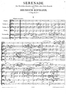 Serenade for String Orchestra and Flute (or Solo-Sextet), Op.65: Serenade for String Orchestra and Flute (or Solo-Sextet) by Heinrich Hofmann