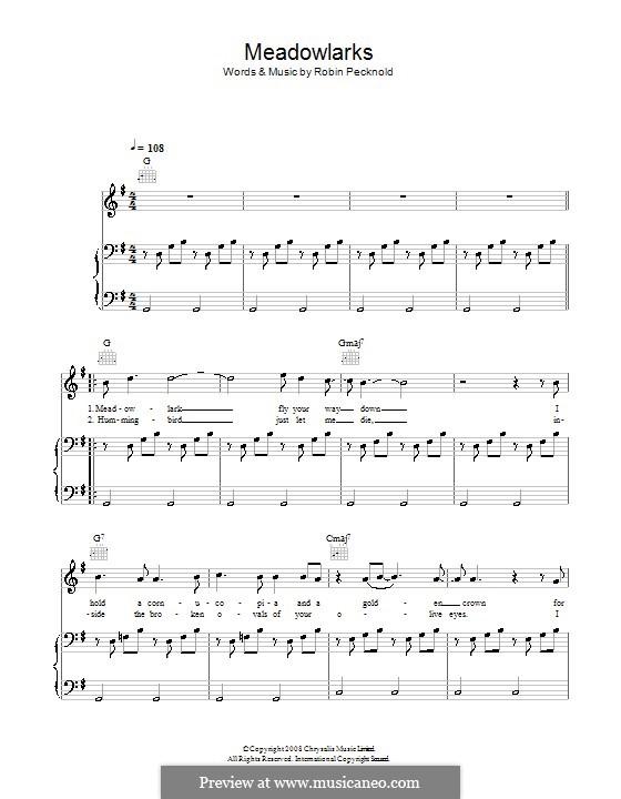 Meadowlarks (Fleet Foxes): Para vocais e piano (ou Guitarra) by Robin Pecknold