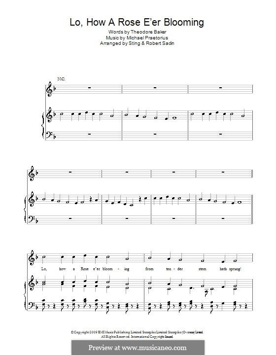 Lo, How a Rose E'er Blooming: Para vocais e piano (ou Guitarra) by Michael Praetorius