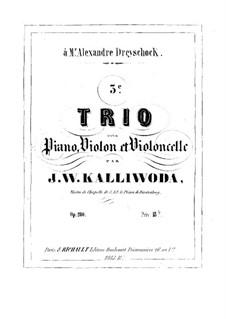Piano Trio No.3, Op.200: Piano Trio No.3 by Jan Kalliwoda