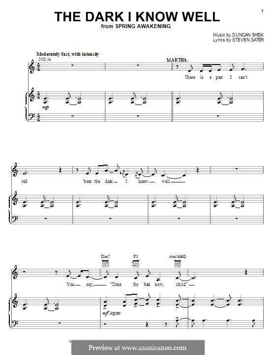 The Dark I Know Well: Para vocais e piano (ou Guitarra) by Duncan Sheik