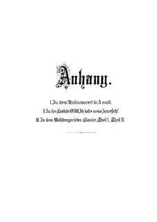 Concerto for Violin, Strings and Basso Continuo No.1 in A Minor, BWV 1041: Appendix No.1 by Johann Sebastian Bach