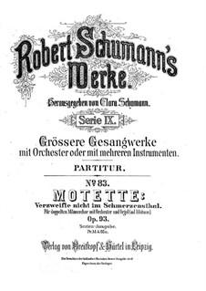 Verzweifle nicht im Schmerzensthal, Op.93: Verzweifle nicht im Schmerzensthal by Robert Schumann