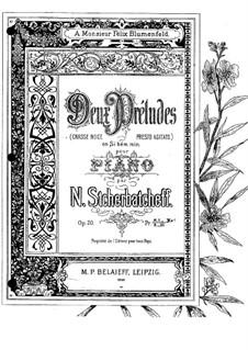 Two Preludes, Op.20: Two Preludes by Nikolai Shcherbachov