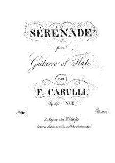 Serenade for Guitar and Flute (or Violin), Op.109 No.2: Serenade for Guitar and Flute (or Violin) by Ferdinando Carulli