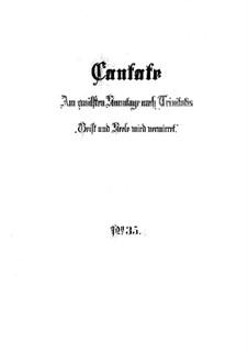 Geist und Seele wird verwirret, BWV 35: Partitura completa by Johann Sebastian Bach