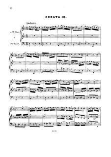 Trio Sonata for Organ No.3 in D Minor, BWV 527: para um único musico (Editado por H. Bulow) by Johann Sebastian Bach