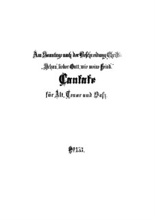 Schau, lieber Gott, wie meine Feind, BWV 153: Partitura completa by Johann Sebastian Bach