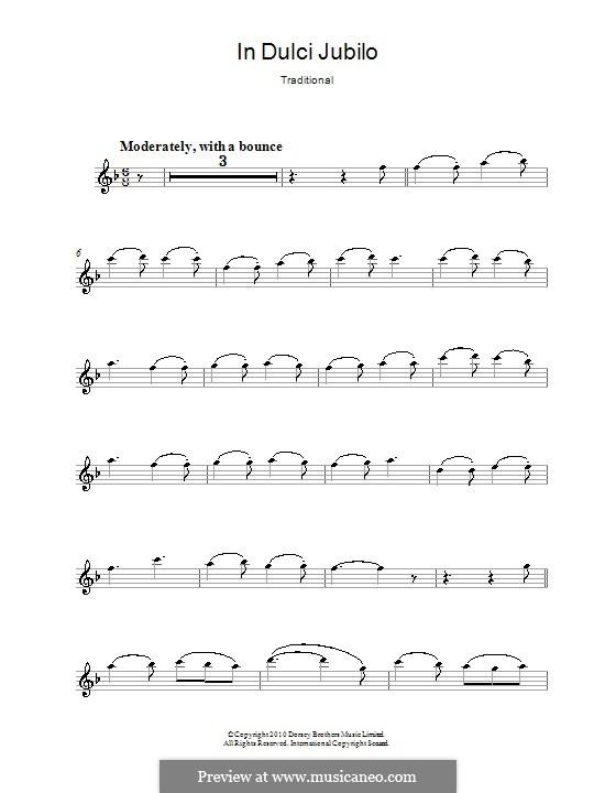 In dulci jubilo: para flauta by folklore
