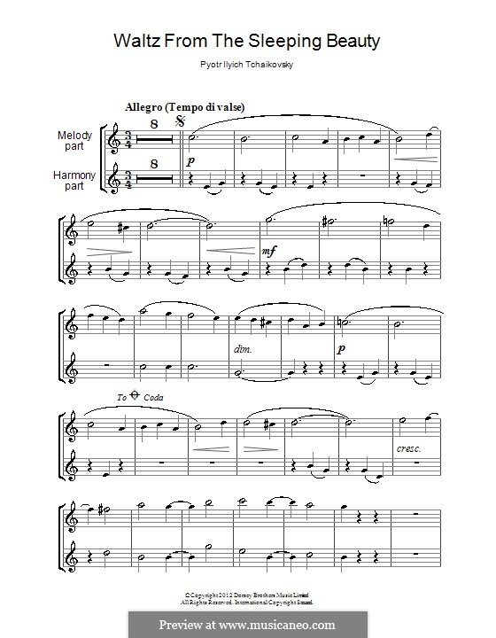 Waltz: para duas clarinetas by Pyotr Tchaikovsky