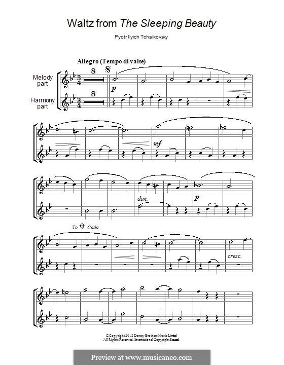 Waltz: para duas flautas by Pyotr Tchaikovsky