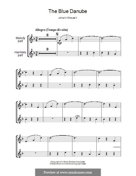 On the Beautiful Blue Danube, Op.314: para duas flautas by Johann Strauss (Sohn)