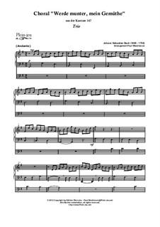 Jesus bleibet: para orgãos by Johann Sebastian Bach
