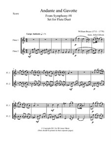 Andante and Gavotte for Flute Duet: Andante and Gavotte for Flute Duet by William Boyce