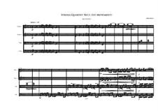 String Quartet No.1: Primero movimento by Irminsul Harp