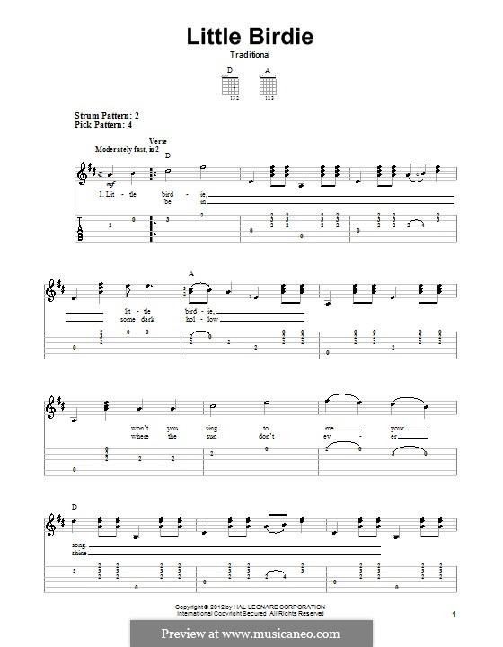 Little Birdie: Para Guitarra by folklore