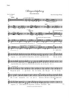 Skargardsshyllning: parte tenor by Hans-Jürgen Philipp