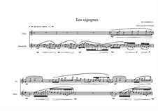 Duo No.14 for Mandolin and Flute, MVWV 218: Duo No.14 for Mandolin and Flute by Maurice Verheul
