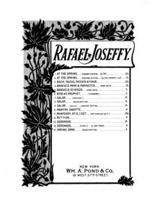 Serenade No.1 in D Major: para um único musico (Editado por H. Bulow) by Rafael Joseffy