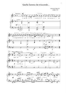 Il mio bel foco: For voice and piano, solo part by Benedetto Marcello