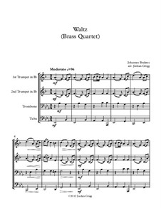 Waltz in G Major, Op.39 No.15: para quarteto de bronze by Johannes Brahms