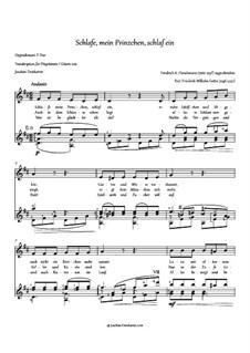Schlafe, mein Prinzchen, schlaf ein: Partitur für zwei Interpreten by Friedrich Fleischmann