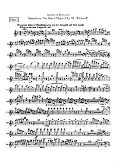 Complete Symphony: parte de flautas by Ludwig van Beethoven