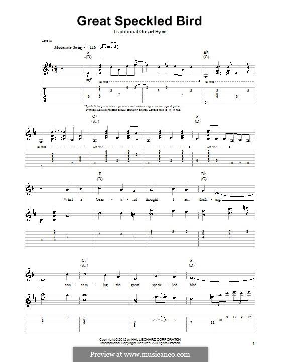 Great Speckled Bird: Para guitarra com guia by folklore
