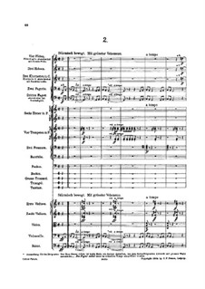 Symphony No.5 in C Sharp Minor: movimento II by Gustav Mahler