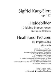 Heathland Pictures, Op.127: para um único musico (Editado por H. Bulow) by Sigfrid Karg-Elert