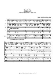 Bumble Bee: SSAA and rehearsal piano by Anders Edenroth