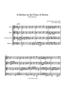 A Shelter in the Time of Storm: Para quarteto de sopro by Ira David Sankey
