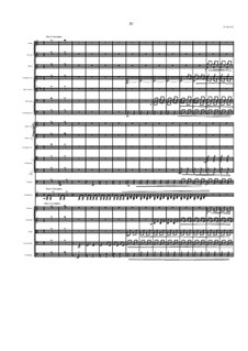 Concerto for arpeggione and orchestra: Movement IV. Finale by Dov Rosenschein
