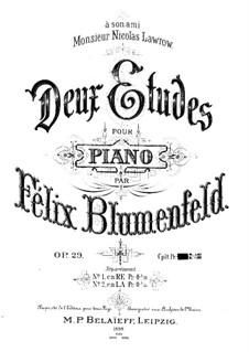 Two Etudes, Op.29: Etude No.1 in D Minor by Felix Blumenfeld