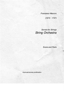 Sonata No.13 in G Minor for Recorder and Strings: Version for strings by Francesco Mancini