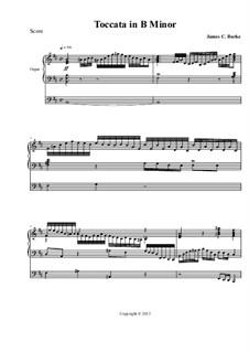 Toccata in B Minor: Toccata in B Minor by James Burke