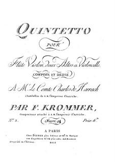 Quintet for Flute and Strings in D Minor, Op.94 No.3: viola parte I by Franz Krommer