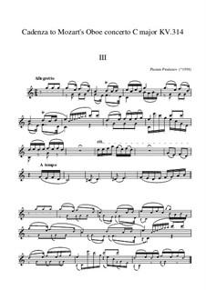Cadenza to Mozart Oboe Concerto KV 314 Third movement: Cadenza to Mozart Oboe Concerto KV 314 Third movement by Plamen Prodanov