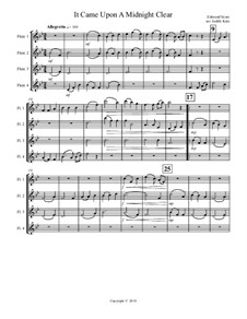 It Came upon the Midnight Clear: para quarteto de flauta by Richard Storrs Willis