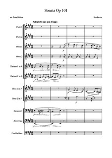 Sonata for Piano No.28, Op.101: Movement I. Arrangement for wind by Ludwig van Beethoven