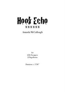 Hook Echo: Hook Echo by Amanda McCullough