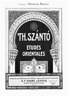 Two Etudes, Op.1: Estudo No.1 by Theodor Szántó