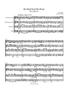 No.20 He Shall Feed His Flock : para quarteto de bronze by Georg Friedrich Händel