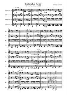 Im falschen Revier, Op.93: Im falschen Revier by Dieter Angerer