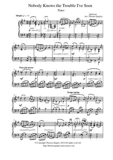 Nobody Knows the Trouble I've Seen: Para piano solo by folklore