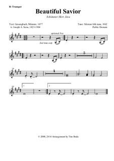 Beautiful Savior: parte instrumentos by folklore