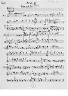 Cantata No.9 'Lieder-Cantate': parte orquetra by Ernst Levy