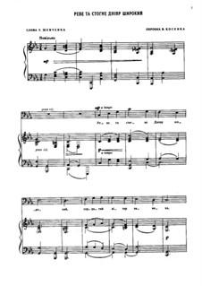 Реве та стогне Дніпр широкий: Для голоса и фортепиано by folklore